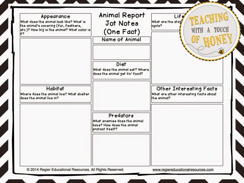 Animal Report Template Unique The Best Of Teacher Entrepreneurs Iii Writing Lesson Animal
