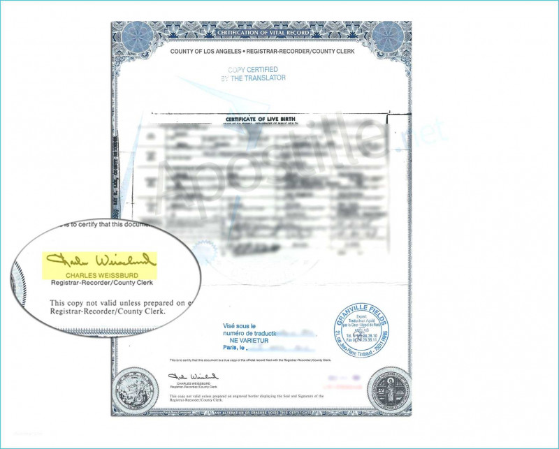 Baby Death Certificate Template Awesome Pretty Baby Death Certificate Template Pictures Awesome Baby Death