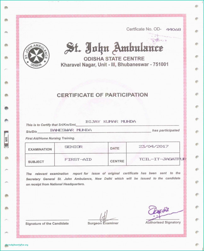 Baptism Certificate Template Download Awesome Certificate Template Free Pdf Water Baptism Certificate Template