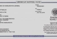 Birth Certificate Translation Template Awesome Free Cuban Marriage Certificate Translation Template Birth