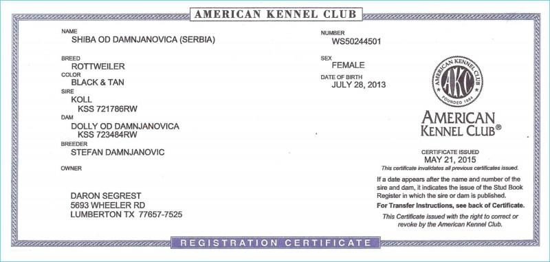 Birth Certificate Translation Template Uscis New Birth Certificate Translation Uscis Beautiful Car Wash Menu Template