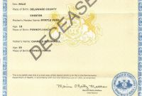 Build A Bear Birth Certificate Template Unique Pa Vital Records Birth Certificate Salesforce Certification New York