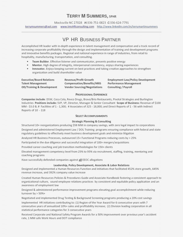 Cleaning Report Template Professional Resume Examples For Cleaning Jobs Beautiful Photos Resume For