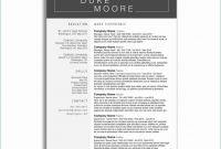 Closure Report Template New Chart In Excel Template Inspiring Photos Project Management Status