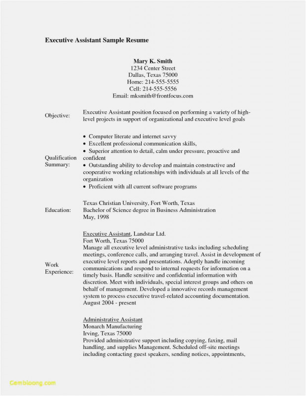 Conference Summary Report Template Awesome Free 51 Project Summary Template Picture Free Professional