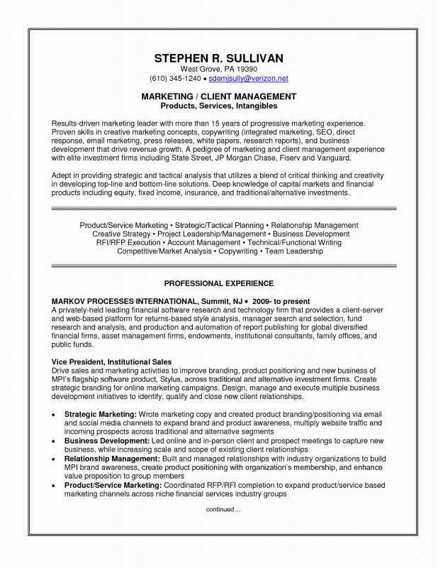 Credit Analysis Report Template Professional Sample Donation Letter Template Download