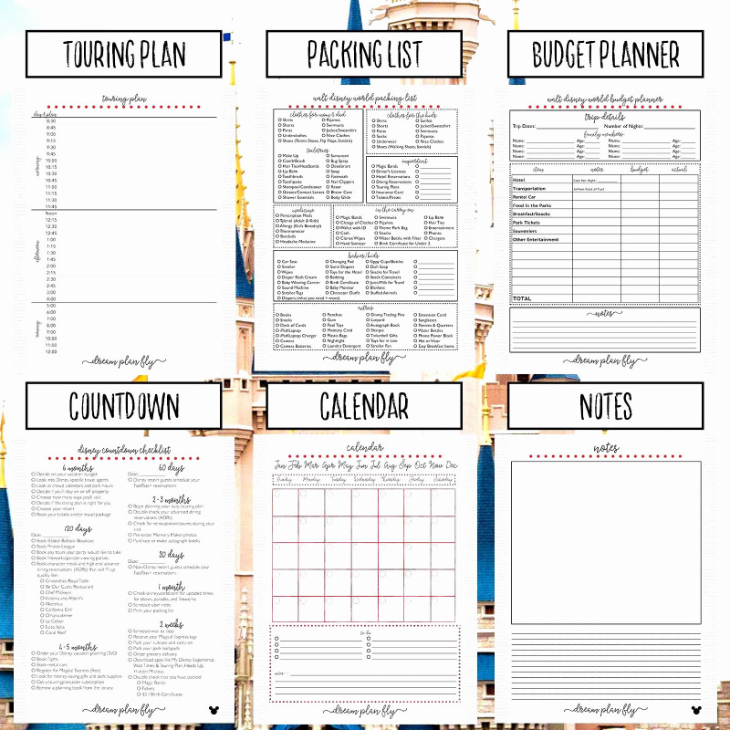 Daily Project Status Report Template Awesome Project Plan Excel Kerstinsudde Se