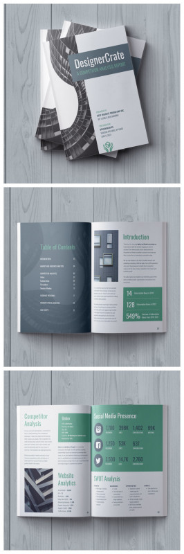 Daily Report Sheet Template Professional 19 Consulting Report Templates That Every Consultant Needs Venngage