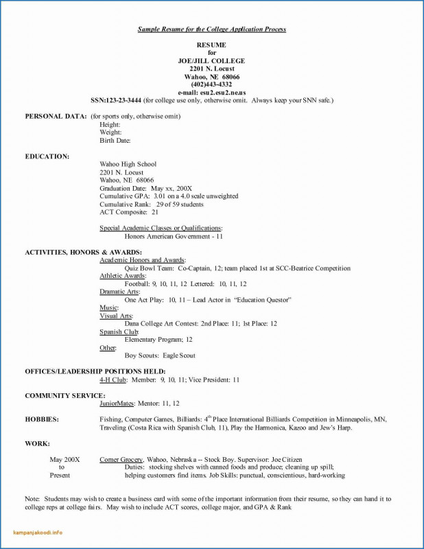 Daycare Infant Daily Report Template Professional Child Care Resume Template Best Of Child Care Assistance Application
