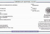 Editable Birth Certificate Template Unique How to Get A Birth Certificate In Memphis Tn Simplex Tn Birth