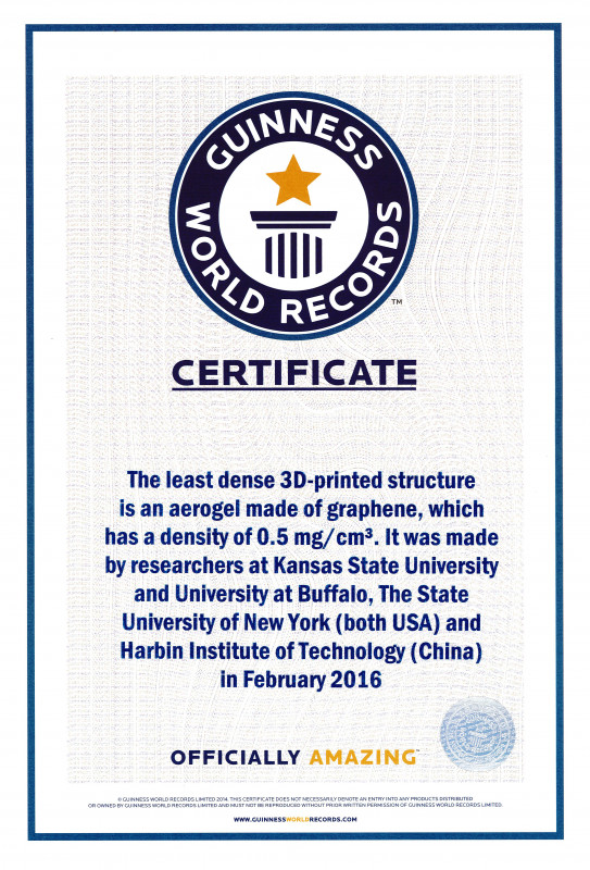 Felicitation Certificate Template New Guinness World Record Certificate Template Eymir Mouldings Co