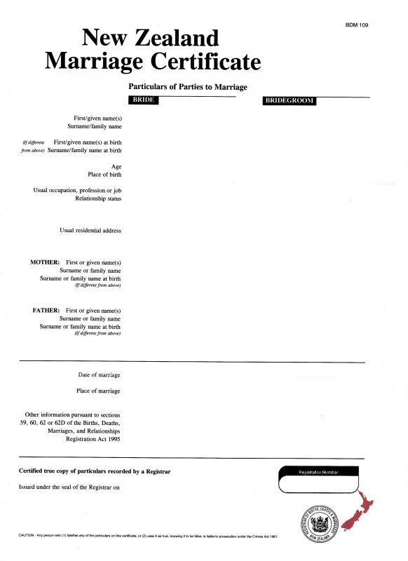 First Aid Incident Report Form Template Unique Apply For A Divorce On Your Own New Zealand Ministry Of Justice
