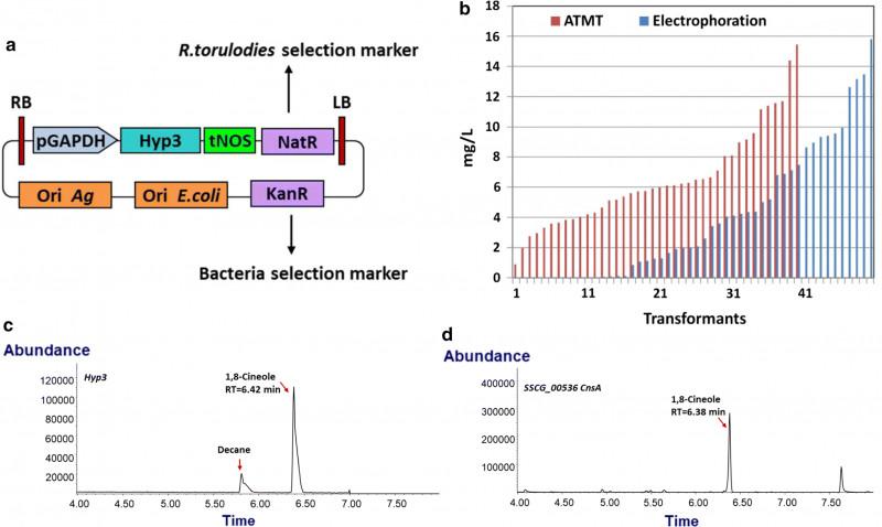 Gas Mileage Expense Report Template Unique Monoterpene Production By The Carotenogenic Yeast Rhodosporidium