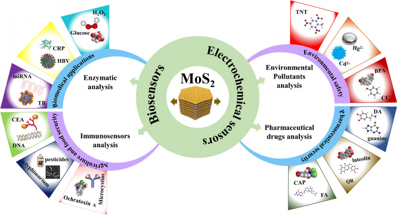 Health And Safety Board Report Template Awesome Recent Advances In Molybdenum Disulfide Based Electrode Materials