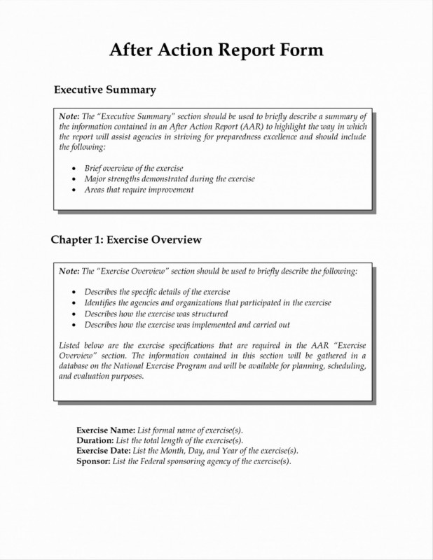 Incident Summary Report Template New 016 Portfolio Management Reporting Templates For New After Action