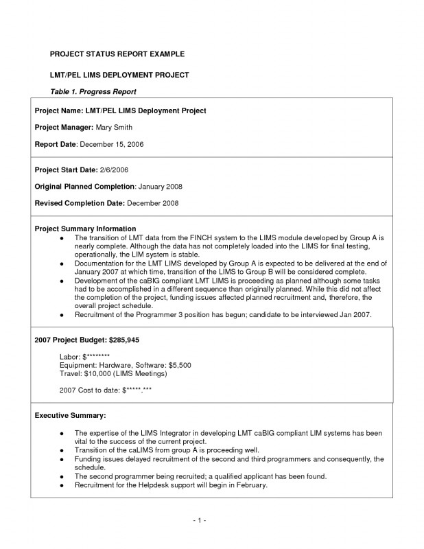Monthly Status Report Template Project Management Professional Status Report Sample Project Daily Template Excel And 7 Monthly