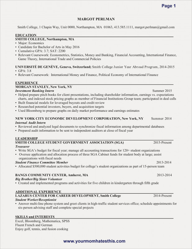 Non Profit Treasurer Report Template New 92 Treasurer Resume Sample Cpa Resume Sample 2015 Cover Letter