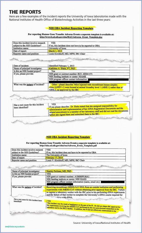 Petty Cash Expense Report Template Professional Secure Spreadsheet Ebnefsi Eu