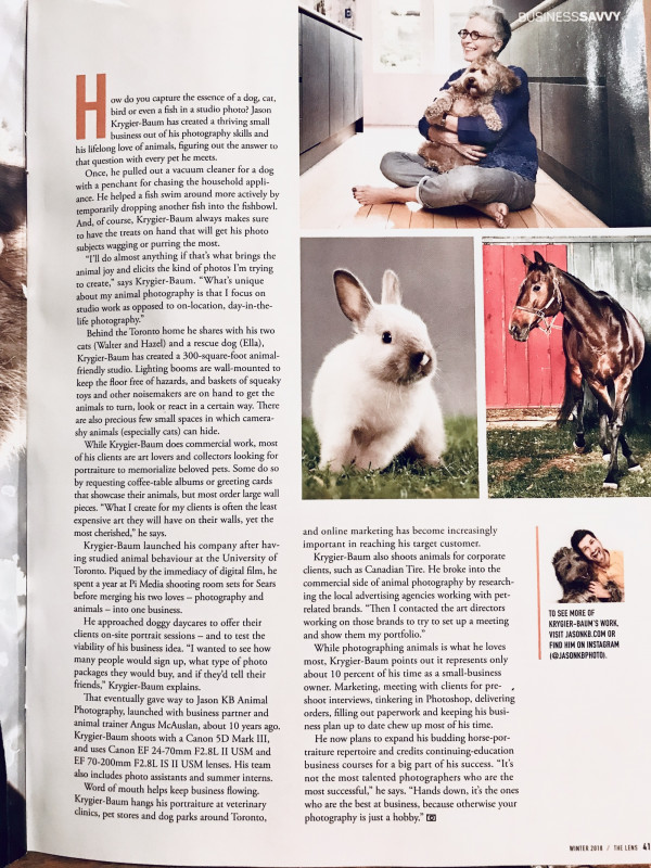 Photoshoot Gift Certificate Template New Blog Animal Photography Toronto Professional Pet Photographers