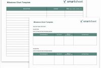 Project Status Report Template In Excel New New Project Status Report Template Excel Www Pantry Magic Com