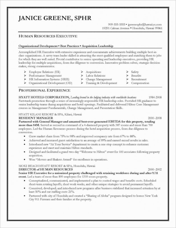 Safety Analysis Report Template Unique Hotel Financial Statements Sample Then Sample Business Analysis