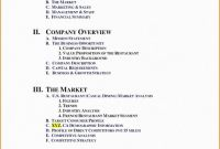 Sales Representative Report Template Awesome Business Analyst Report Template Caquetapositivo