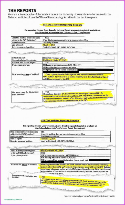 School Report Template Free Awesome Example Of Data Analysis Report Kobcarbamazepi Website