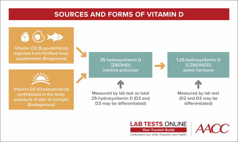 Science Experiment Report Template Unique Vitamin D Tests