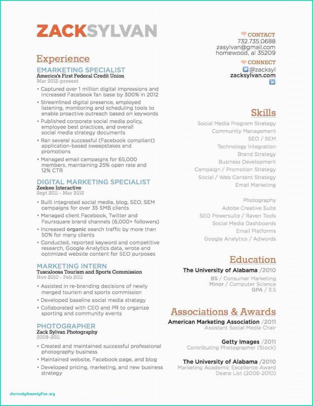 Social Media Marketing Report Template Professional Digital Marketing Resume Template Free Digital Marketing Resume