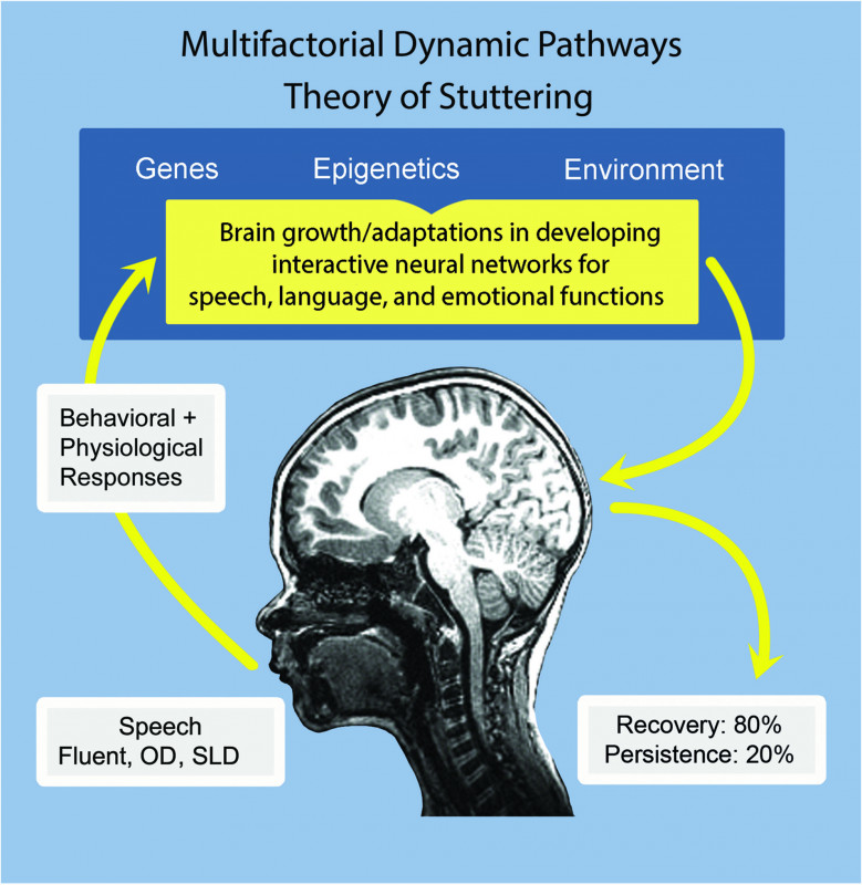 Speech And Language Report Template Unique How Stuttering Develops The Multifactorial Dynamic Pathways Theory