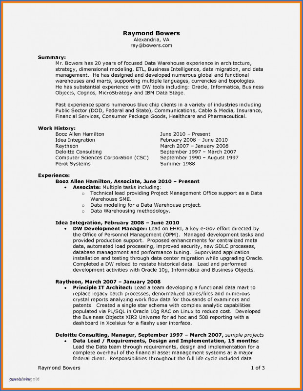 Website Traffic Report Template Awesome Website Designer Resume Sample Professional Buy Resume Templates