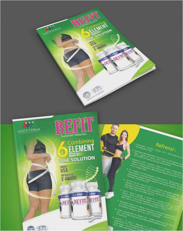 3 Fold Brochure Template Free Awesome Download 55 Free Tri Fold Template Sample Free Professional