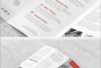 Cleaning Brochure Templates Free Best Best Of Adobe Indesign Brochure Templates Free Best Of Template