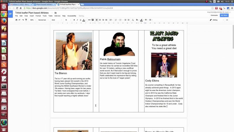 Travel Brochure Template Google Docs New Tri Fold Brochure Google Docs Awesome To Google Docs Pamphlet