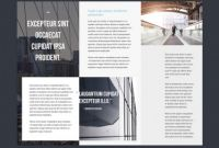 Tri Fold Brochure Template Indesign Free Download Awesome Tri Fold Brochure Template Indesign Free Download Professional