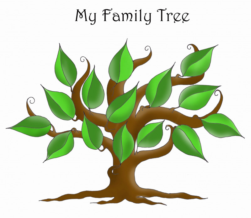 Blank Family Tree Template 3 Generations Awesome 40 Editable Family Tree Templates Markmeckler Template Design