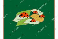 Blank Ladybug Template New Ladybird isolated Illustration Ladybug On Green Stock Vector