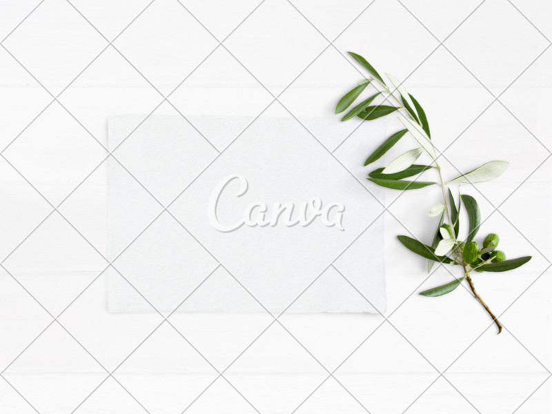 Wheel Of Life Template Blank New Styled Stock Photo Feminine Wedding Desktop Mockup With