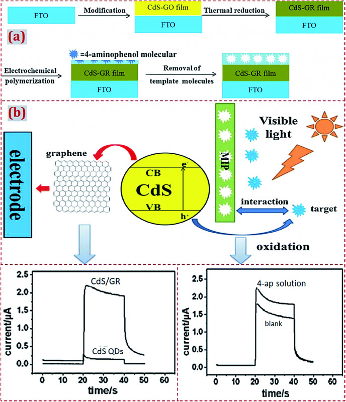 16 Per Page Label Template New Preparation and Applications Of Electrochemical Chemosensors