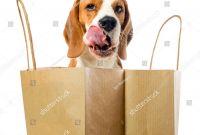 Chapstick Label Template Unique Bag Balm Dog Licking