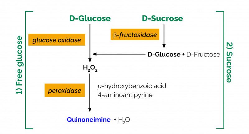 Free Ghs Label Template Awesome Sucrose D Glucose Assay Kit Megazyme