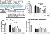 Labels 8 Per Sheet Template Word New Inhibitory Effect Of Progesterone On Cervical Tissue