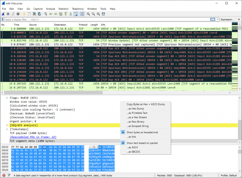 Template For Address Labels In Word New Wireshark Users Guide