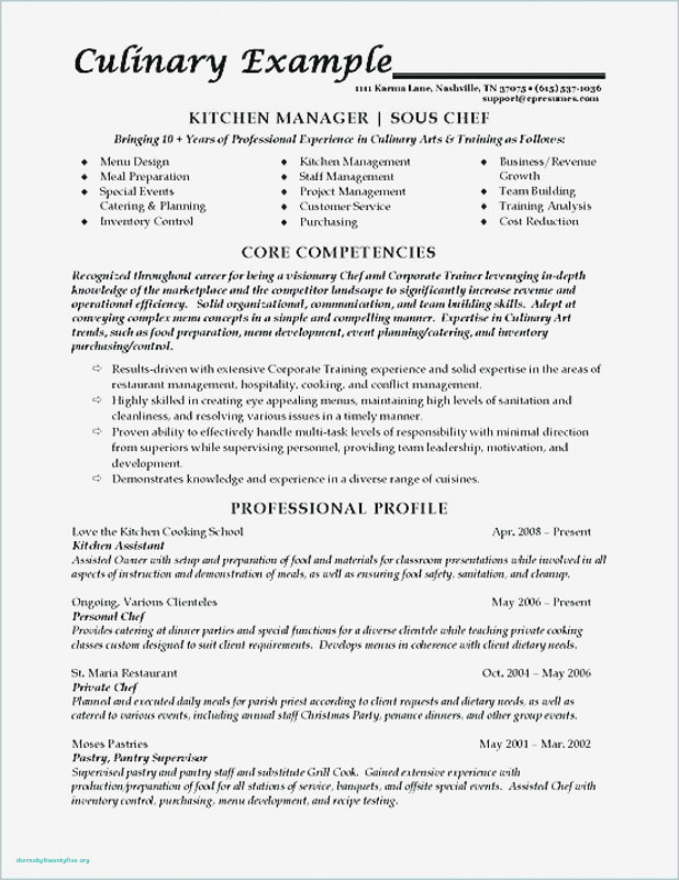 Restaurant Menu Costing Template Awesome Best Executive Chef Resume Samples Resume Resume